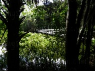 ormond-beach-florida-park