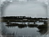 St Johns River, Palatka FL