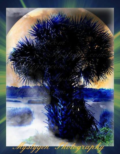 Mystic in Blue