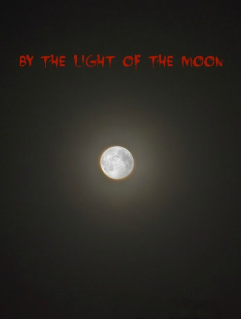 By the Light of the Moon insert
