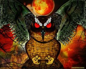 owl12CRPJB