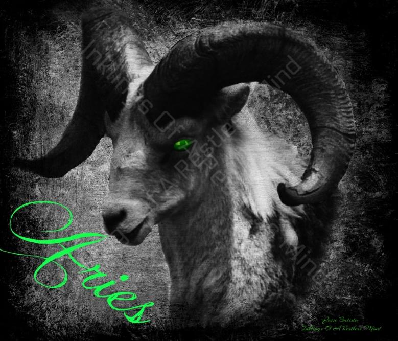 Ram16Ariescrp